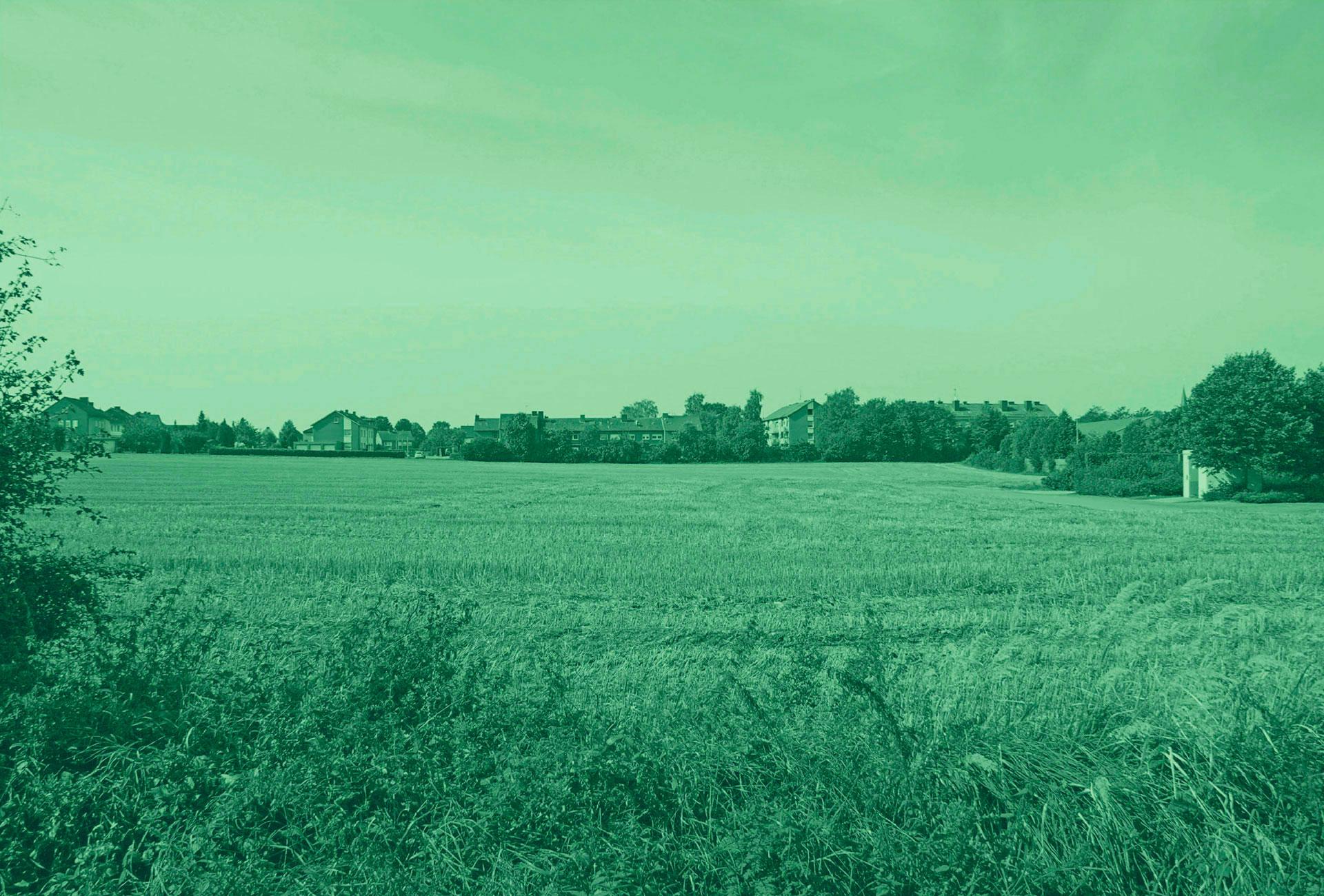 1920x1300_grfeld_gruen